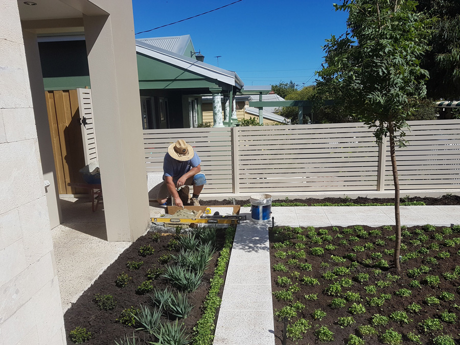 Alessio working in a local Perth garden booked in for a full makeover