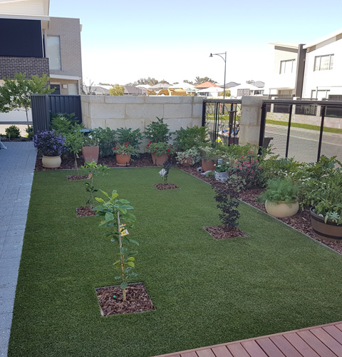 A complete landscaping and garden makeover in Baldivis, Western Australia