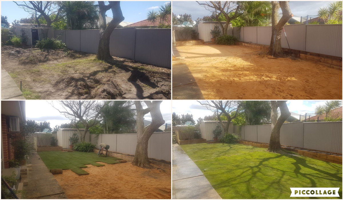 A grass and reticulation installation in a Perth backyard