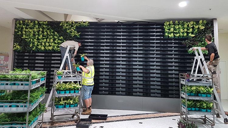 vertical garden wall being built