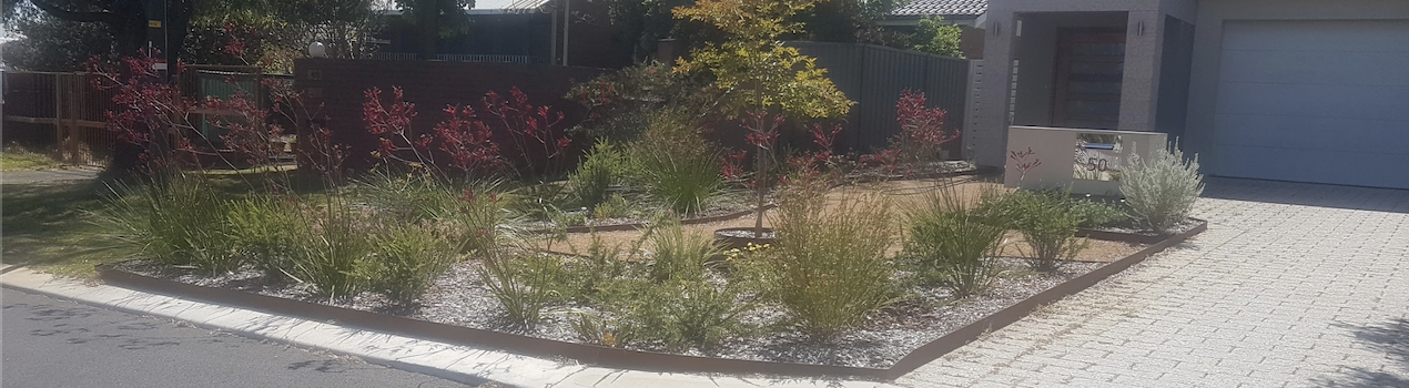 A beautiful garden in the front section of a Perth home.